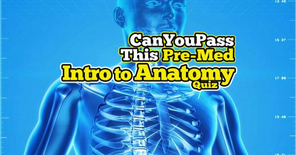 quizwow - Can You Pass This Pre-Med Intro to Anatomy Quiz?